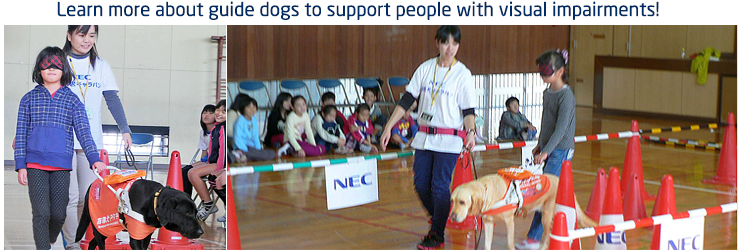 Learn more about guide dogs to support people with visual impairments!