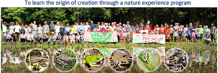 To learn the origin of creation through a nature experience program