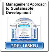 Management Approach to Sustainable Development