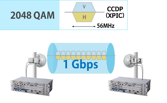 2048QAM 56MHz 1Gbps transport