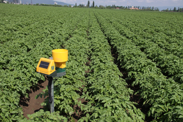 Nec And Dacom Collaborate On Precision Farming Solution